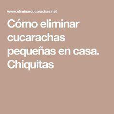 Como Acabar Con La Plaga De Cucarachas Chiquitas Como Eliminar Cucarachas Pequenas En Casa Chiquitas Eliminar