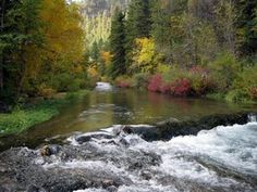 Peak Color Along Spearfish Creek Maine, River, Pictures, Photography, Outdoor, Color, Photos, Outdoors, Photograph