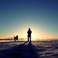 #instagram #dog #bestriend #sun #horizon #hope