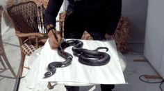 New 3D Snake Painting Looks Like It's Primed to Pounce Off the Page