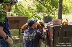 April 25, 2014 - Isola, MS Animal Rescue Corps (ARC), working with the Humphreys County Sheriff's Office, removed 12 dogs from the property of a suspected dog fighting operation today in Isola, MS