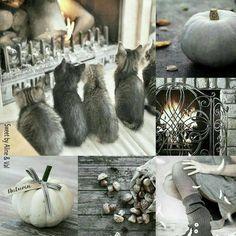 ❧ Collages de photos ❧ 2