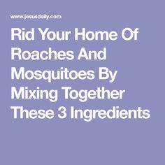 Rid Your Home Of Roaches And Mosquitoes By Mixing Together These 3 Ingredients