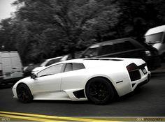 Lamborghini cars-motorcycles