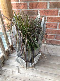 Purple fountain grass in a hypertufa planter