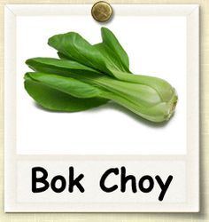 How to Grow Bok Choy | Guide to Growing Bok Choy