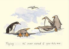 M101 FLYING ..... IT'S OVERRATED IF YOU ASK ME a Two Bad Mice card by Anita Jeram