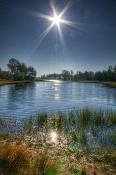 Ven op de Strabrechtse Heide, natuurgebied van ca. 1500 ha in zuidoostelijk Noord-Brabant, voorheen behorend bij de Groote Peel.