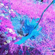 En güzel dekorasyon paylaşımları için Kadinika.com #kadinika #dekorasyon #decoration #woman #women #fallleaves #glitter #figurine #decoration #toy  #art #artistic #artsy #beautiful #psychedelicart  #daring #different #digitalart #leaves