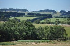 victorian countryside - Google Search