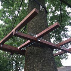 Budowa platformy na drzewie. Building platform on the tree.