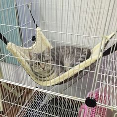 Dot Polyester Pet Cat Cage Hammock Small Dog Bed Cover