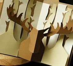 Popup cards moose
