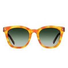 dd52fcbab7be Diff Ryder Honey Tortoise Trending Sunglasses, Sunglasses Online, Eyeglasses,  Honey, Lenses,
