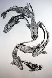 Image result for koi fish drawing