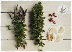 Cooling herbs, mint, melissa, rose and camomile
