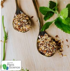 Heads, legs & ground cinnamon – Plant Science by Atrimed Plant Science, Ground Cinnamon, Food Facts, Legs, Bridge, Bones