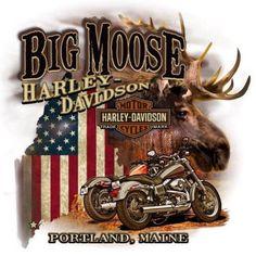 Harley Davidson Images, Harley Davidson Posters, Used Harley Davidson, Motos Harley, Harley Bikes, Harley Davidson Motorcycles, Steve Harley, Harley Davidson Dealership, Harley Dealer