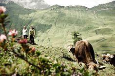 Warth am Arlberg - Urlaub in den Bergen im Wellnesshotel Warther Hof am Arlberg  steht für ein intensives Naturerlebnis. Bergen, Hotels, Mountain Hiking, Mountains, World, Austria, Nature, Travel, Ski