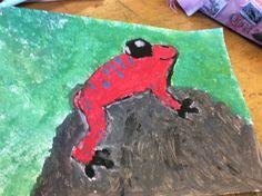 Rode kikker
