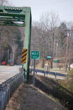 Bridge over the Wolf River. Pall Mall, TN. Home of Sgt. Alvin C. York.  James E. Akenson  jakenson@tntech.edu