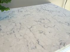 Viatera Quartz- Rococo This is the counter top we picked out today!!!