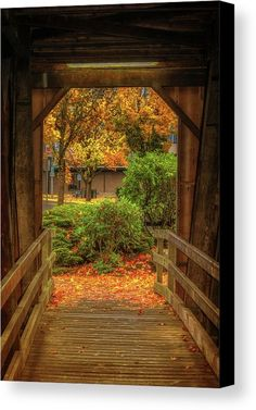 Bridge Canvas Print featuring the photograph Looking Out by Marnie Patchett