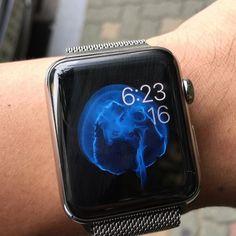 오늘의 #애플워치 #applewatch. #밀레니즈루프 by holyhost84