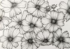 How to Draw Beautiful Floral Art with Pens Outline Drawings, Cool Art Drawings, Pencil Art Drawings, Easy Drawings, Flower Art Drawing, Flower Drawing Tutorials, Floral Drawing, Drawing With Pen, Drawing Step