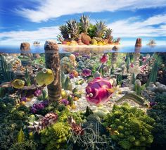 """""""coralscape"""" art in food by Carl Warner"""