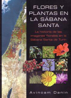 Avinoam Danin, professor de Botânica da Universidade Hebraica de Jerusalém