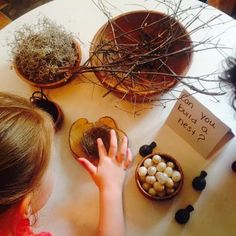 Can you build a nest? Moments with Little Munchkins: Rockin' Robins ≈≈