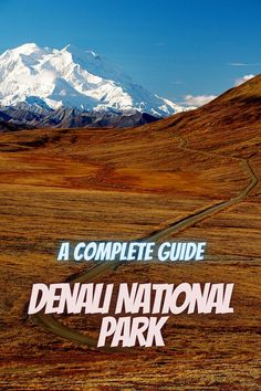 Here is a complete guide to Denali National Park. united states national park   road trip national park us national park   best national parks USA   list of national parks   travel national parks #USAnationalparks #DenaliNationalPark #NationalPark Best National Parks Usa, National Park Camping, State Parks, Road Trip, Vacation, United States, Travel, Vacations, Viajes