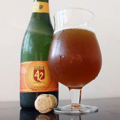 10 cervejas artesanais brasileiras para tomar neste verão