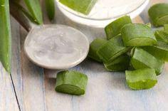 Cómo elaborar jabón natural con Aloe vera (sábila) y miel. - Mejor Con Salud