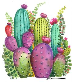 watercolor Colorful Cactus Garden no. 1 Original watercolor Colorful Cactus Garden no. watercolor Colorful Cactus Garden no. Red Cactus, Cactus Art, Cactus Flower, Flower Art, Small Cactus, Garden Cactus, Indoor Cactus Plants, Cactus Decor, Cactus Painting