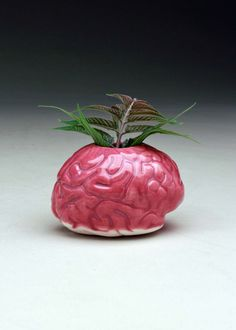 Aqua Brain Bud Vase psychology geek chic geekery nerd biology ...