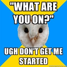 Bipolar Humor, Mental Health Quotes, Mental Illness, Owl, Depression, Anxiety, Funny Stuff, Memes, Funny Things