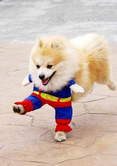 Super Pom to the rescue!!