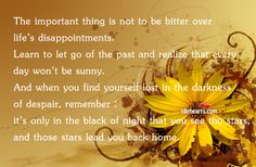 The Important Thing Is Not to Be Bitter Over... - IdleHearts