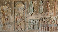 Imágenes: Descubren el primer jardín funerario del Antiguo Egipto - http://codigooculto.com/2017/05/imagenes-descubren-el-primer-jardin-funerario-del-antiguo-egipto/