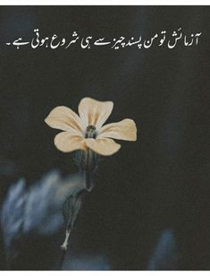 Urdu Funny Poetry, Poetry Quotes In Urdu, Best Urdu Poetry Images, Poetry Pic, Poetry Lines, Poetry Books, Muslim Love Quotes, Beautiful Islamic Quotes, Islamic Inspirational Quotes