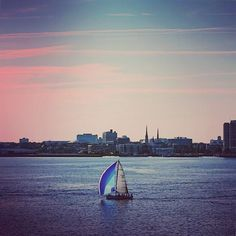It's such a wonderful feeling when you have wind in your sails...#sailing #sailboat #sailinglife #sailor #travel #travelblog #travelphoto #awesomeearth #sunset #icw #atlanticocean #charleston #charlestonharbor #harborview #adventure by adventure_travelers