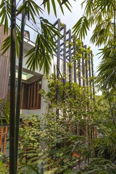 Resultado de imagem para fachadas com vegetação
