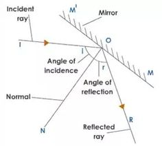 Law of Reflection in a Plane Mirror: the angle of