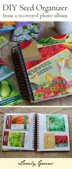 Convert a photo album into a snazzy new seed organiser - such a fun, useful, and cute project! #gardening #craft #gardenart