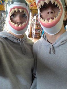 We're sharks