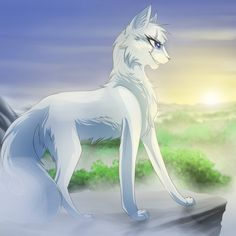 Snowcloud. She-cat. Very pretty, wise, and swift. She is friendly, and loyal. No mate or kits, warrior (me)