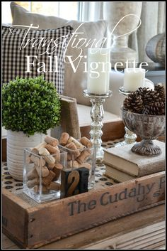 5 Eager Cool Ideas: Transitional Living Room Neutral transitional house tips. Coffee Table Vignettes, Fall Vignettes, Coffee Table Styling, Decorating Coffee Tables, Coffee Table Centerpieces, Autumn Centerpieces, Tray Styling, Coffee Table Tray, Centrepieces