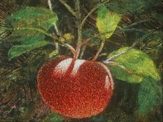 Apple - Embroidery by Linda Behar